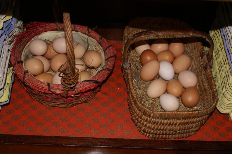 Paniers oeufs, pour préparer les repas de table